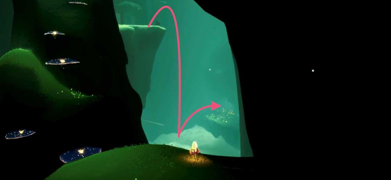 雨林の光の翼