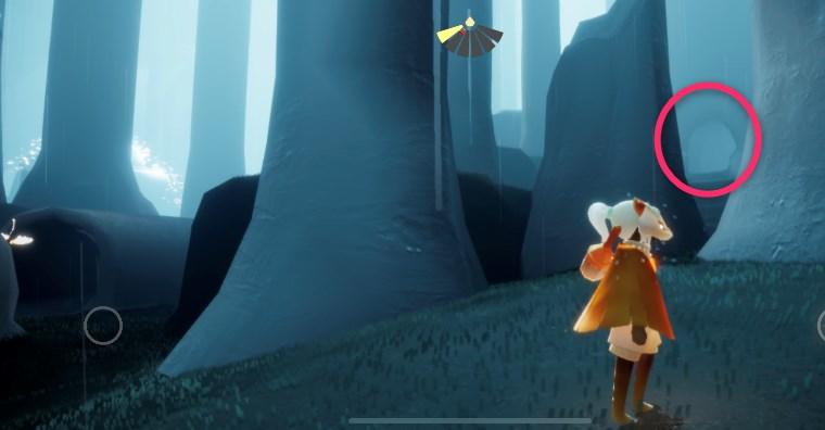 雨林の光の翼入手場所