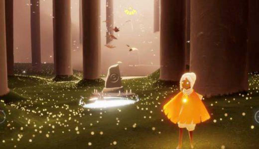 【Sky 星を紡ぐ子どもたち】雨林の端で瞑想する方法