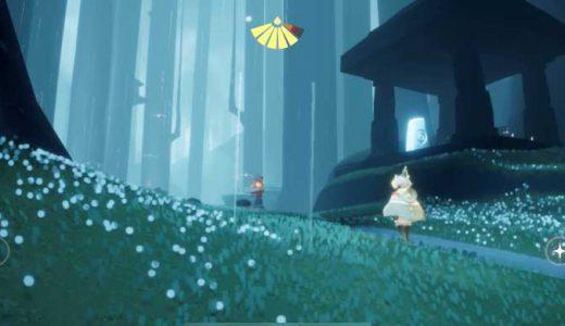 【Sky 星を紡ぐ子どもたち】雨林の木のうろの下で瞑想する方法